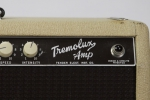1961 Fender Tremolux_4.jpg