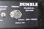 Dumble Overdrive Special 208_5.JPG